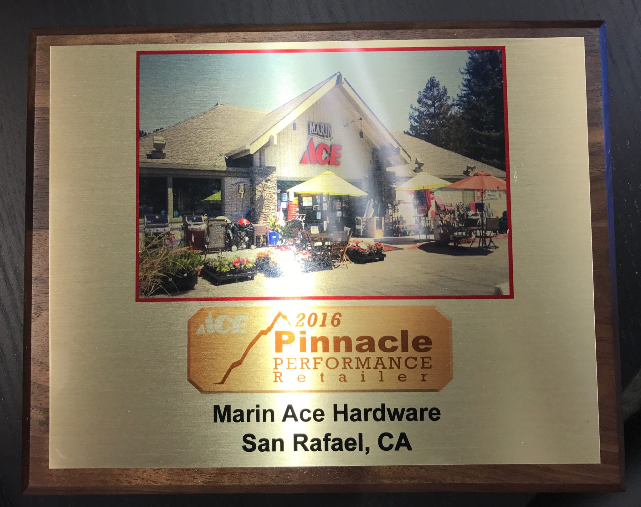 2016 Marin Ace Pinnacle Award