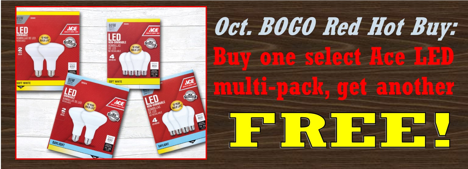 October LED BOGO