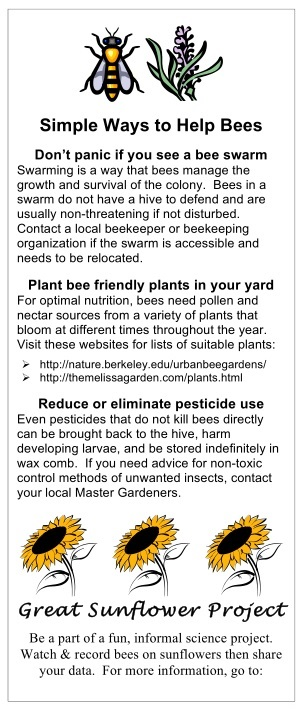 Simple Ways To Help Bees