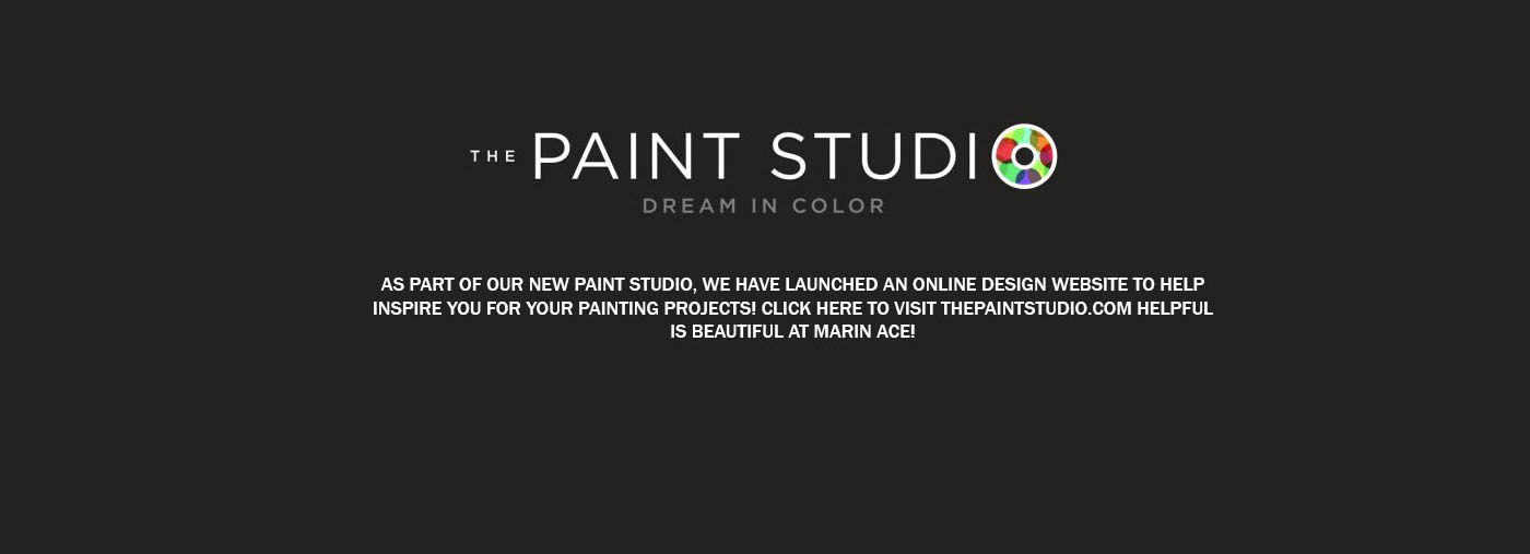 Ace Paint Studio
