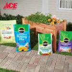 Time to plant with Miracle-Gro