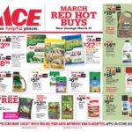 March Red Hot Buys