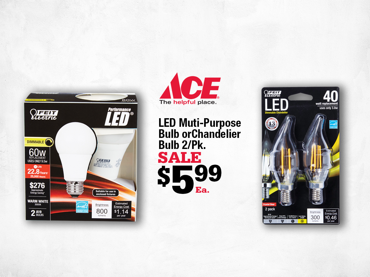 Marin Ace February Deals - LED Bulbs