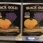 Black Gold Starter & Transplant