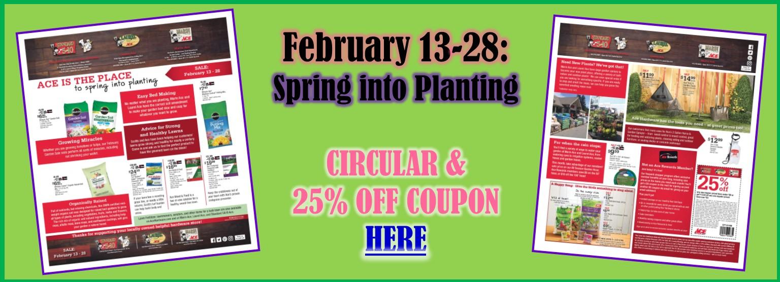 Spring Sale 2 19