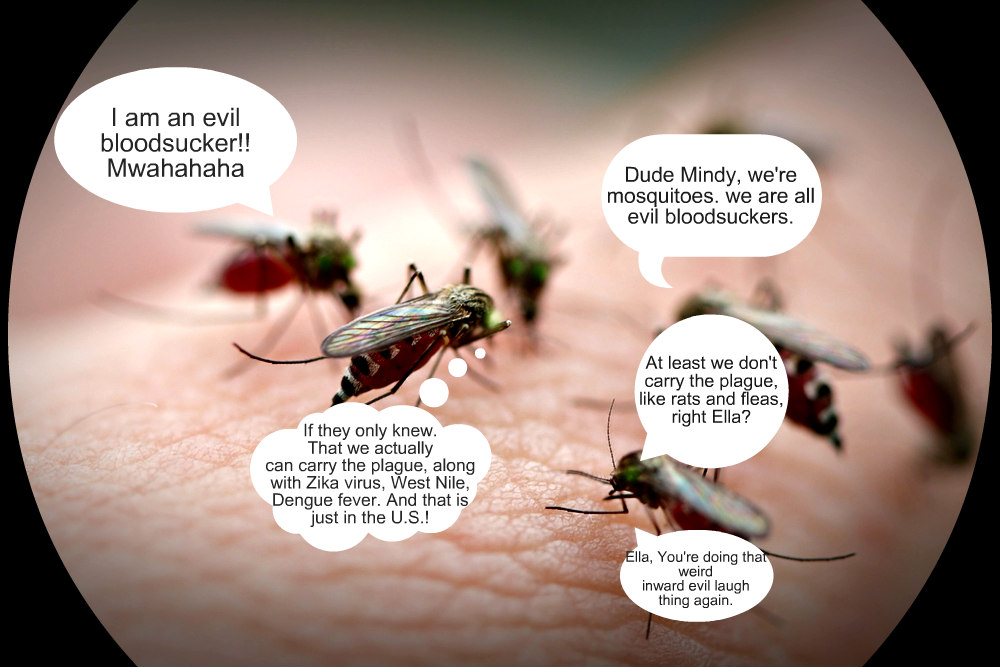 Evil mosquitoes conspire.