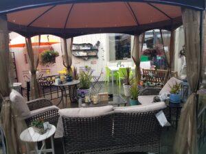 new patio Marin Ace 2020